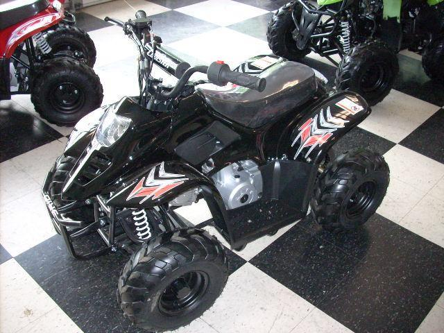 2013 ATV COOLSTER ATV110BK for sale