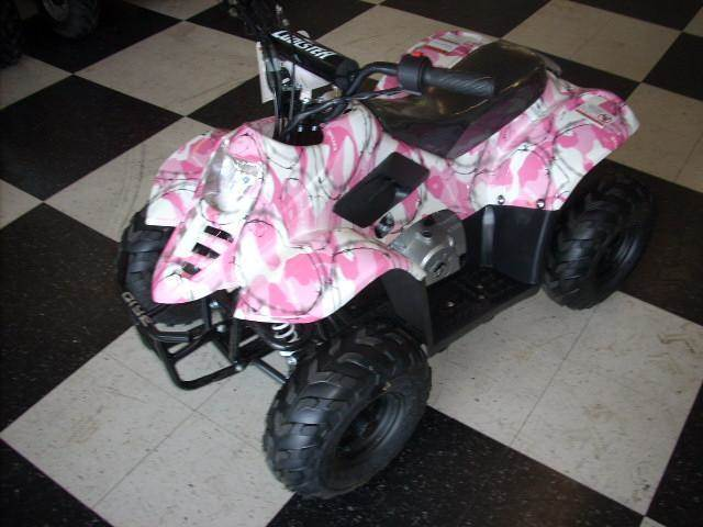 2013 ATV COOLSTER 110PINK
