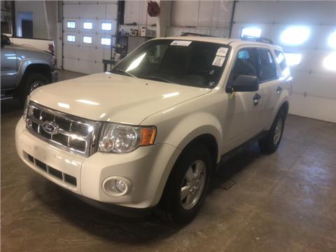 2010 Ford Escape for sale in Greenville, MI