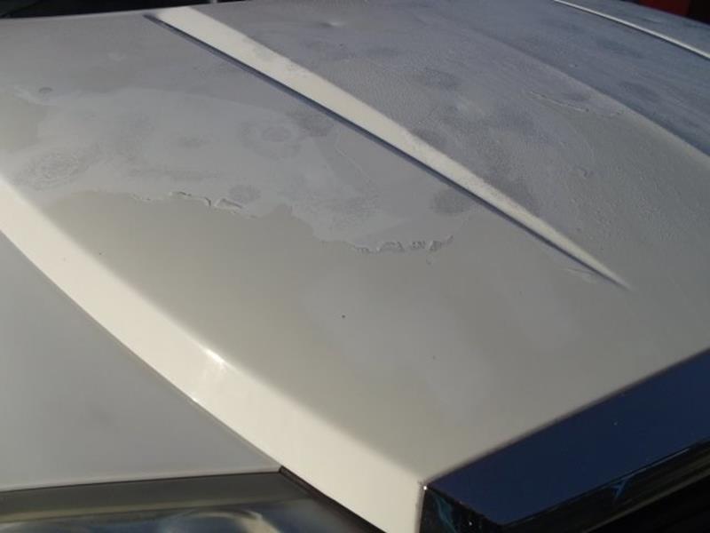 2006 Dodge Dakota SLT 4dr Quad Cab SB - West Point NE