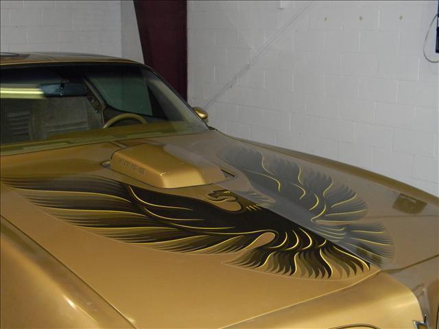 1978 Pontiac Y-88 GOLD SPECIAL EDITION TRANS AM - Parkersburg WV