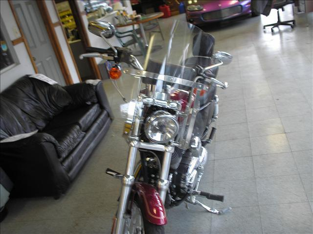 2005 Harley-Davidson 1200 Custom  - Old Hickory TN