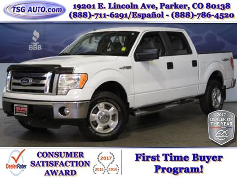 2010 Ford F-150 for sale in Parker, CO