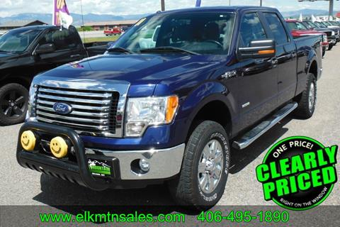 2011 Ford F-150 for sale in Helena, MT