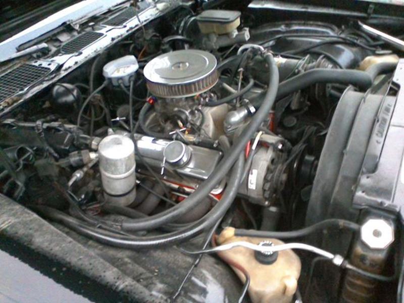 1981 Chevrolet Camaro Z28 In Old Forge PA - Petillo Motors
