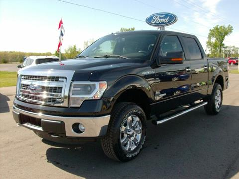 2014 Ford F-150 for sale in Chesaning, MI