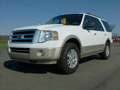 2010 Ford Expedition for sale in Chesaning MI