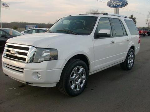 2013 Ford Expedition for sale in Chesaning, MI
