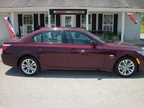 2010 BMW 5 Series for sale in Rainbow City AL