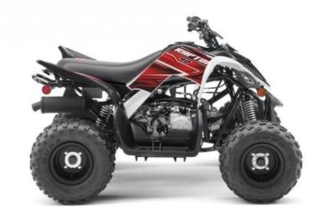 2019 Yamaha Raptor for sale in Madison, SD