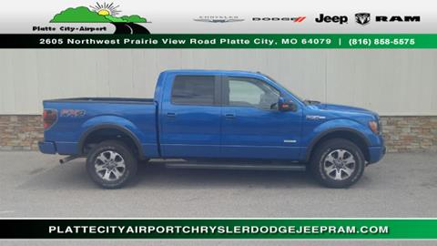 2013 Ford F-150 for sale in Platte City MO