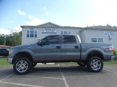 2009 Ford F-150 for sale at SOUTHERN SELECT AUTO SALES in Medina OH