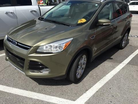 2014 Ford Escape for sale in Wesley Chapel, FL