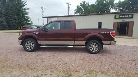 2009 Ford F-150 for sale in O'Neill NE