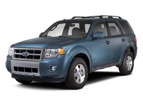 2010 Ford Escape XLT for sale at HILAND TOYOTA in Moline IL