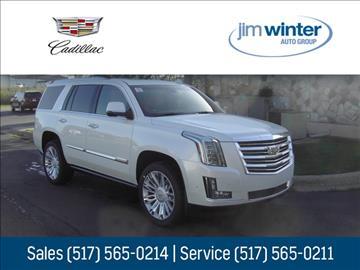 2017 Cadillac Escalade for sale in Jackson, MI