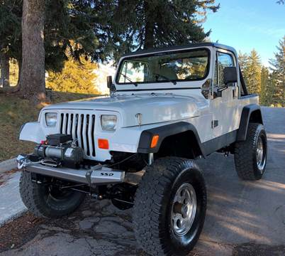 1989 Jeep Wrangler for sale in Mount Olive, NC