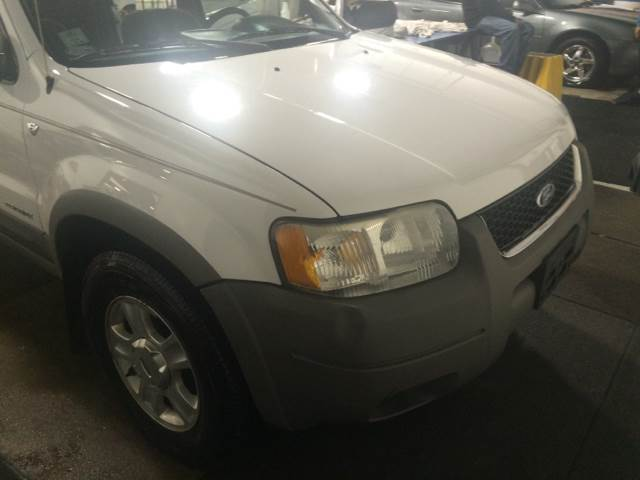 2002 Ford Escape for sale at RIVER AUTO SALES CORP in Maywood IL