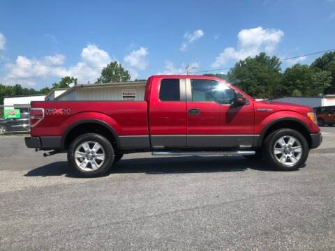2009 Ford F-150 for sale at BARD'S AUTO SALES in Needmore PA