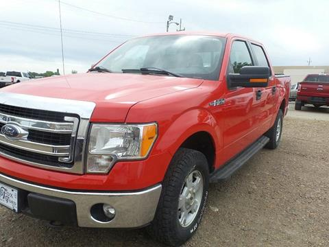 2013 Ford F-150 for sale in Wolf Point, MT