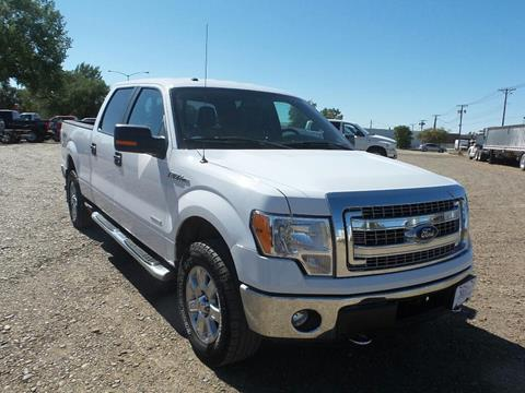 2014 Ford F-150 for sale in Wolf Point, MT