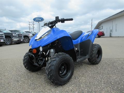 2020 Kawasaki KFX50 for sale in Highmore, SD