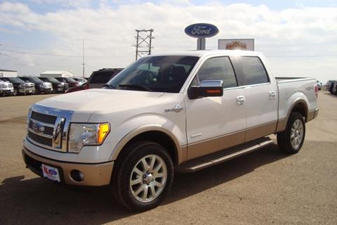 2011 Ford F-150 for sale in Highmore, SD
