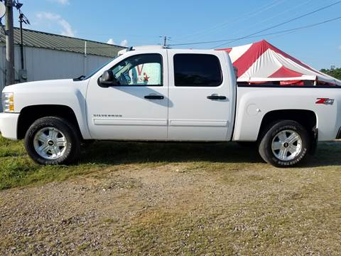 2010 Chevrolet Silverado 1500 for sale at AM Automotive in Erin TN