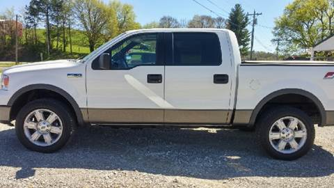 2006 Ford F-150 for sale at AM Automotive in Erin TN