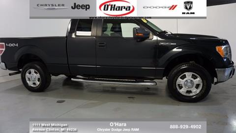 2010 Ford F-150 for sale in Clinton, MI