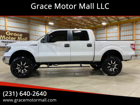 2011 Ford F-150 for sale at Grace Motor Mall LLC in Traverse City MI