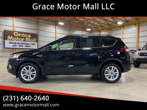 2017 Ford Escape for sale at Grace Motor Mall LLC in Traverse City MI