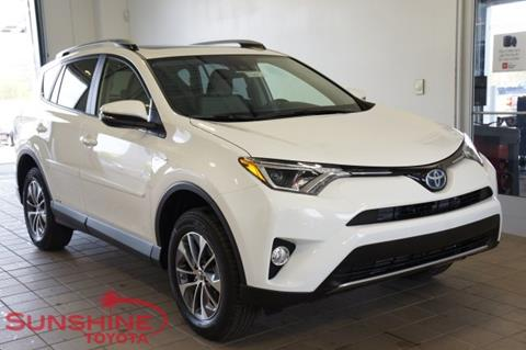 2017 Toyota RAV4 Hybrid for sale in Springfield, MI