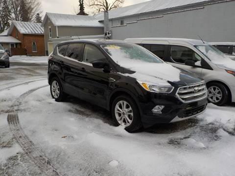 2017 Ford Escape for sale in Delton, MI