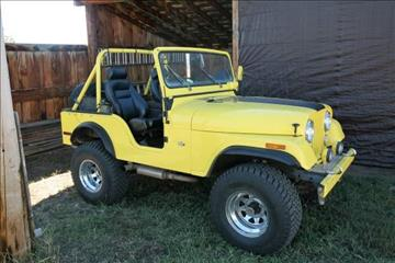 1972 Jeep CJ-5 for sale in Cadillac, MI