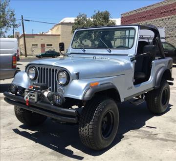 1981 Jeep CJ-7 for sale in Cadillac, MI