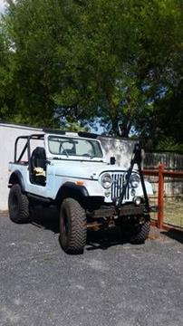 1979 Jeep CJ-7 for sale in Cadillac, MI