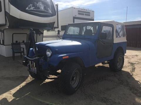 1978 Jeep CJ-7 for sale in Cadillac, MI