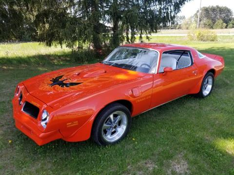 1976 Pontiac Trans Am for sale in Cadillac, MI