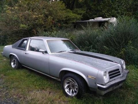 1976 Pontiac Ventura for sale in Cadillac, MI