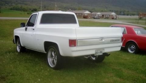 1981 Chevrolet Silverado 1500 SS Classic for sale in Cadillac, MI
