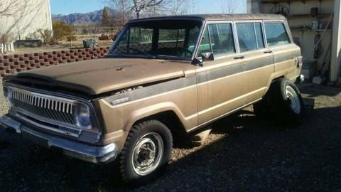 1969 Jeep Wagoneer for sale in Cadillac, MI