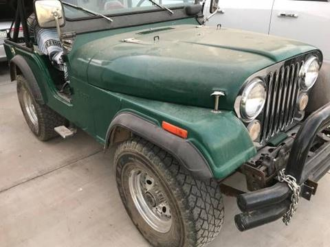1973 Jeep CJ-5 for sale in Cadillac, MI