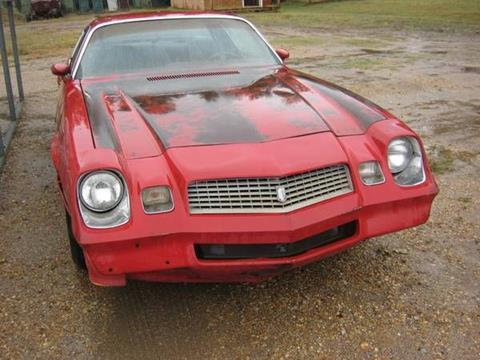 1980 Chevrolet Camaro for sale in Cadillac, MI