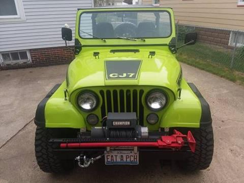 1980 Jeep CJ-7 for sale in Cadillac, MI