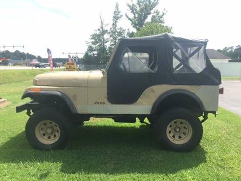 1976 Jeep CJ-5 for sale in Cadillac, MI