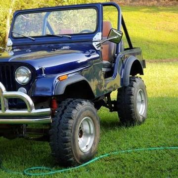 1981 Jeep CJ-5 for sale in Cadillac, MI