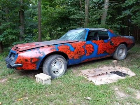 1975 Pontiac Firebird for sale in Cadillac, MI