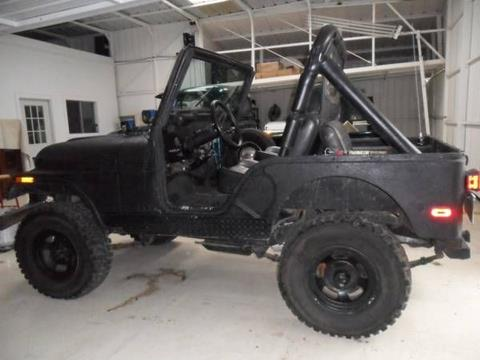 1979 Jeep CJ-5 for sale in Cadillac, MI