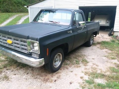 1976 Chevrolet Silverado 1500 SS Classic for sale in Cadillac, MI
